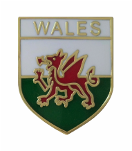 Wales Flag Shield Pin Badge